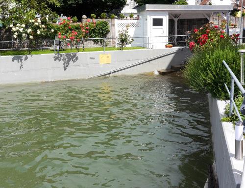 Hochwasser im Häfele